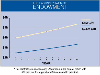 endowment growth chart